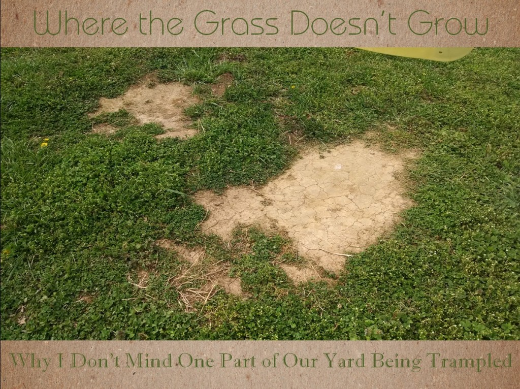 grass doesnt grow